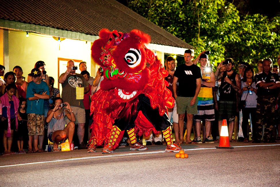 Lion-Dance---Alex-Cearns