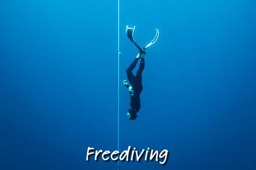 freedive Christmas Island Australia